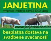 Janjetina